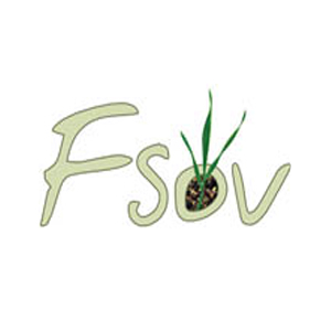 Logo FSOV