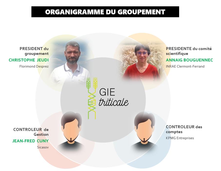 Composition du GIE : l'oganigramme